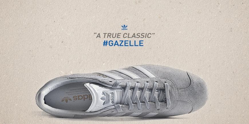 Gazelle are back 1