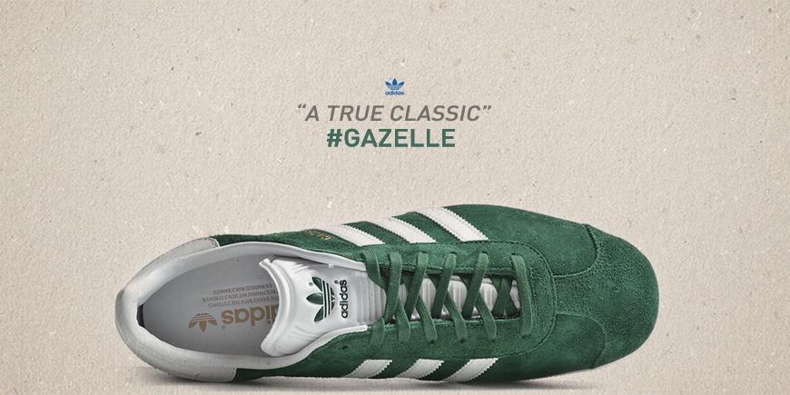 Gazelle are back 2